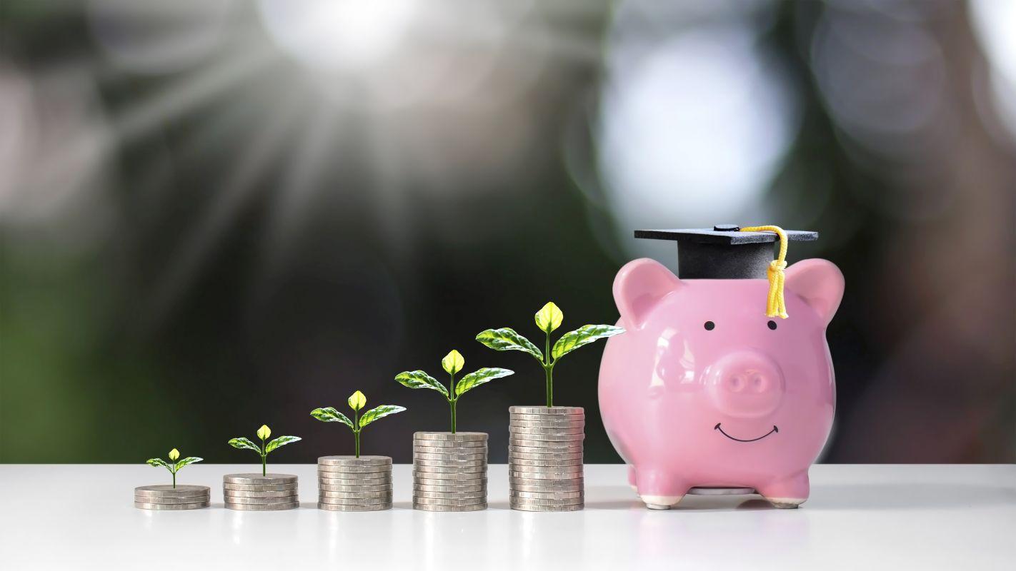 Sparschwein mit Geld und Pflanzen
